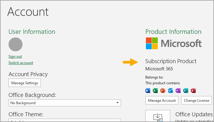 Excel Subscription Information at File > Account