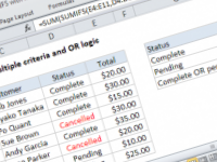 Excel formula: SUMIFS with multiple criteria and OR logic