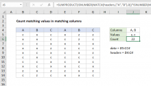Excel formula: Count matching values in matching columns