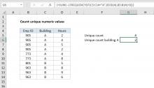 Excel formula: Count unique numeric values with criteria