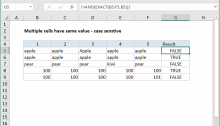 Excel formula: Multiple cells have same value case sensitive