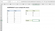 Excel formula: SUMPRODUCT count multiple OR criteria