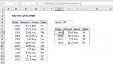 Excel formula: Basic filter example