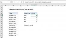Excel formula: Count cells that contain case sensitive