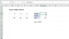 Excel formula: Count visible columns