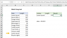 Excel formula: Match long text