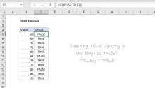 Excel TRUE function